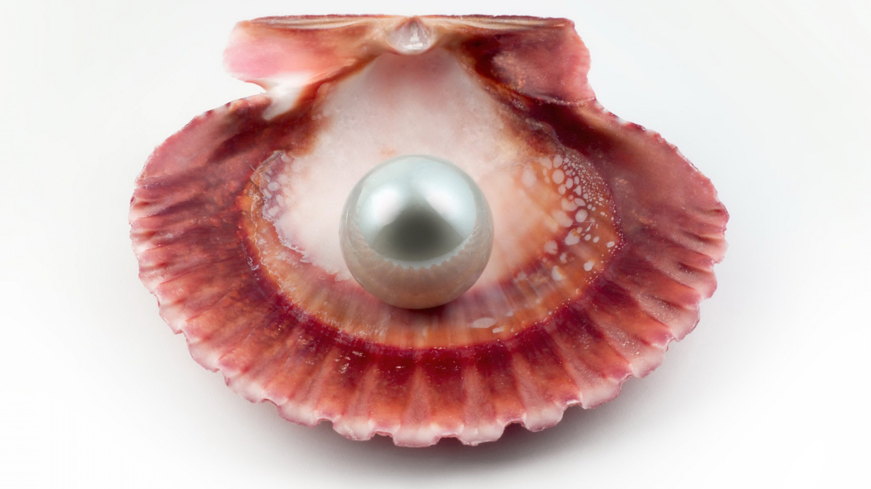 Pearl Google Cover