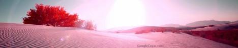 Desert Flare Google Cover