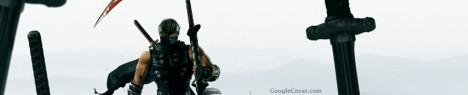 Ninja Gaiden 2 Google Cover