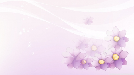 Purple Flowers Google Cover