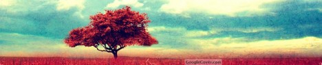 Red Tree Google Cover