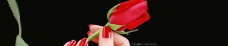 Rose in Hand Google Cover