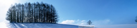 Winter Scenery Google Cover